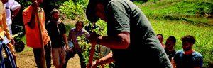 fattoria-corsi-permacultura